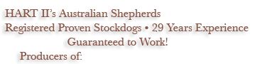 Working Trial Champions - Ranch Trial Dog Certified - Qualified for ASCA National Stockdog Finals - Hall of Fame Sires and Dams